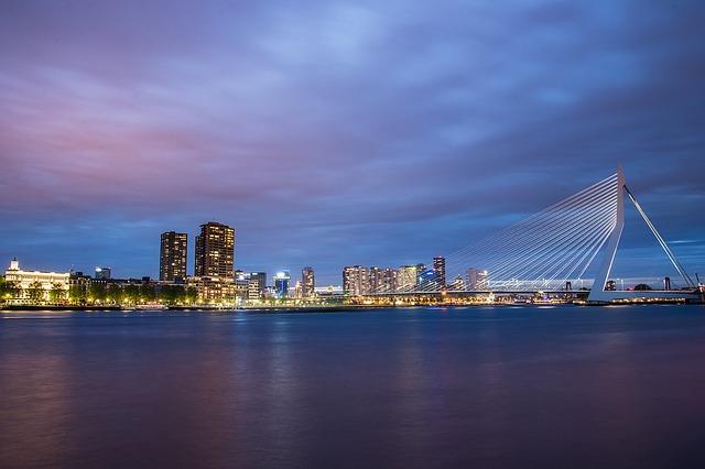 SEO Bureau Rotterdam